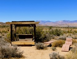 Pet Friendly Cabins in Joshua Tree